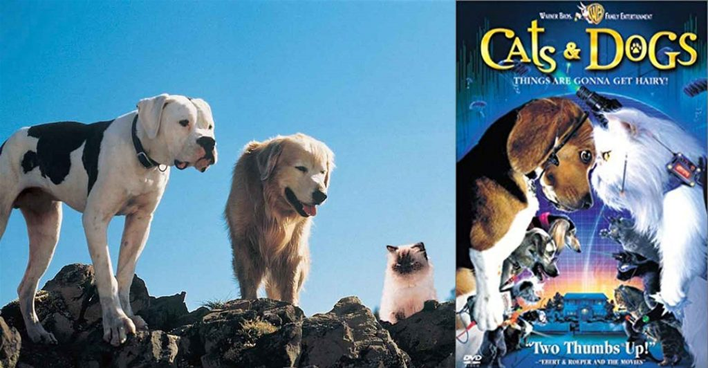 left image is of the two dogs and one cat from Homeward Bound. right image is of Cats & Dogs trailer poster with beagle face to face with a white persian.