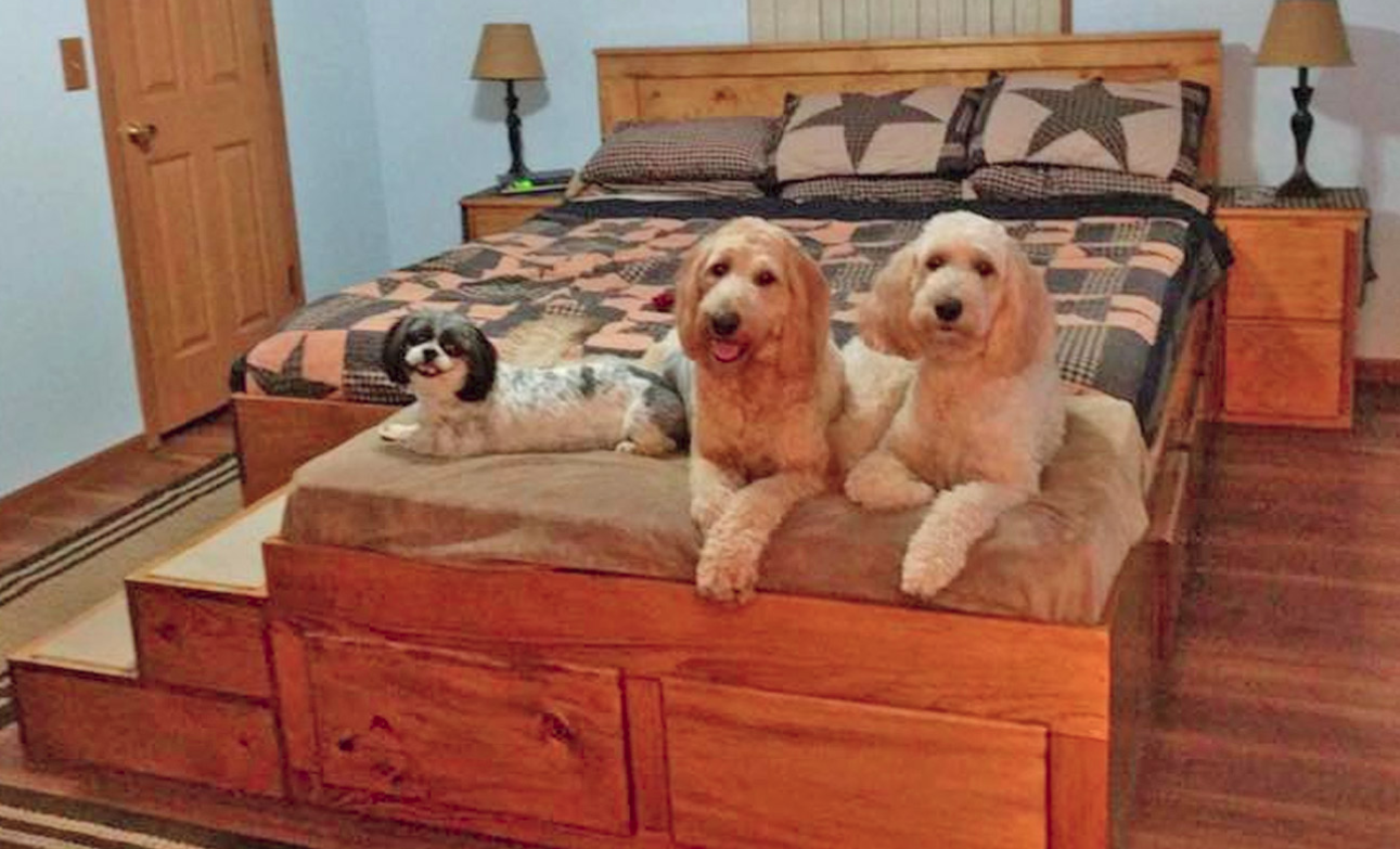 Bed Frame With Built In Dog Bed Is Perfect For A Pet Family